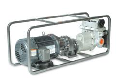 Dixon Pumps 2000